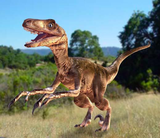 A Deinonychus dinosaur.