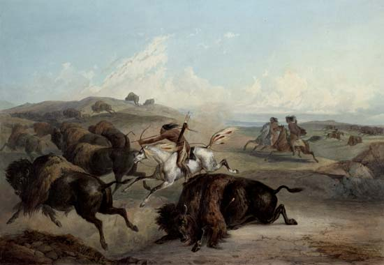 The Plains Indians depended on the bison for their survival.