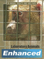 Laboratory Animals cover