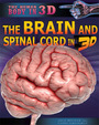 The Brain and Spinal Cord in 3D cover