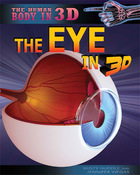 The Eye in 3D