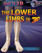 The Lower Limbs in 3D