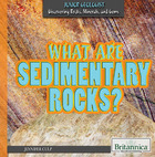 What are Sedimentary Rocks? image