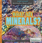 What are Minerals? image
