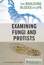 Examining Fungi and Protists cover