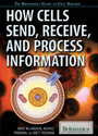 How Cells Send, Receive, and Process Information cover
