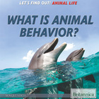 What Is Animal Behavior?