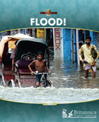 Flood! image
