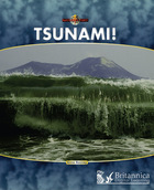 Tsunami! image