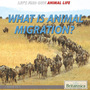 What Is Animal Migration? cover