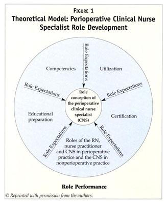 Academic OneFile - Document - Perioperative clinical nurse ...