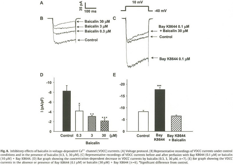 Academic onefile document baicalin a flavonoid from scutellaria nelson mt quayle jm 1995 physiological roles and properties of potassium channels in arterial smooth muscle am j physiol cell physiol ccuart Choice Image