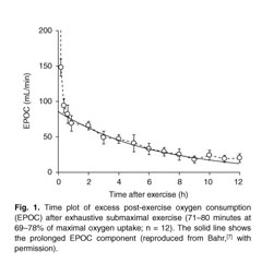 Academic OneFile - Document - Effect of exercise intensity