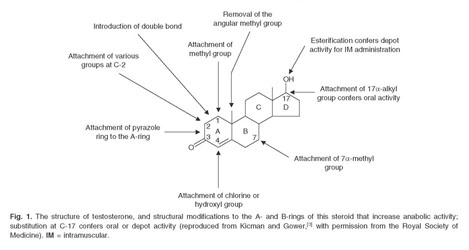 Academic OneFile - Document - Anabolic steroid use: patterns of use