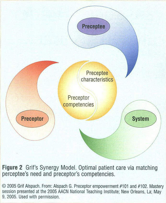 synergy model for patient care Conceptual models and the nursing organization: implementing the aacn synergy model for patient care™.