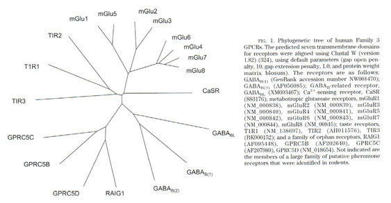methotrexate cytoxan