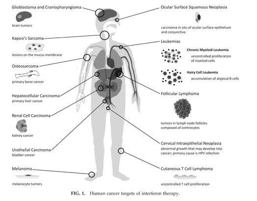 meclizine classification