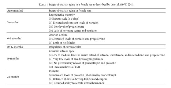 Academic OneFile - Document - Efficacy of female rat models in