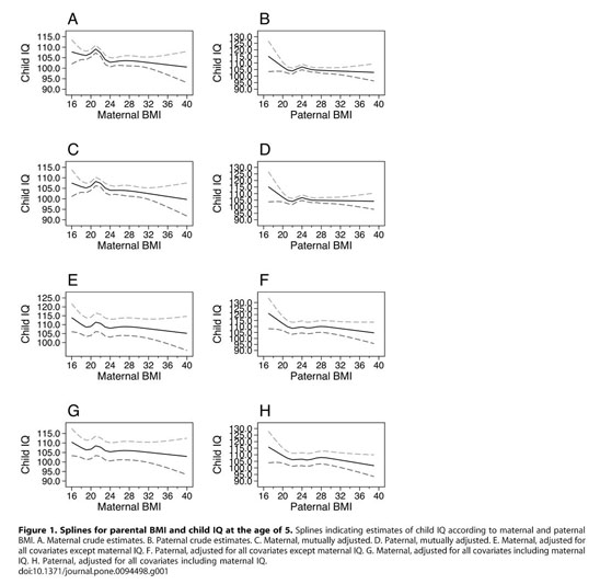 Academic OneFile - Document - Maternal pre-pregnancy BMI and