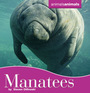 Manatees cover