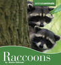 Raccoons cover