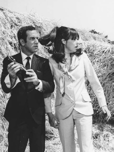 Barbara Feldon starred with Don Adams in the television series Get Smart from 1965 to 1970. Feldon played the role of the savvy Agent 99, in contrast to Adamss bumbling Agent 86.  BETTMANNCORBIS. REPRODUCED BY PERMISSION.