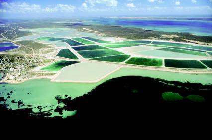 Salt evaporation ponds at Shark Bay, Western Australia.