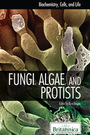 Fungi, Algae, and Protists cover