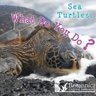 Sea Turtles, What Do You Do? image