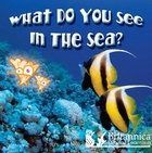 What Do You See in the Sea? image