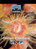 Creatures of the Waters: Encounter fascinating animals that live in and around water