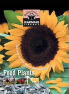 Food Plants: Learn about the many different kinds of plants we eat