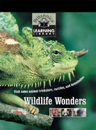 Wildlife Wonders: Visit some animal tricksters, rarities, and homebodies image