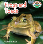 Frogs and Toads image