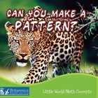 Can You Make a Pattern?