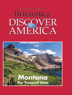 Montana: The Treasure State image