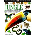 Jungle image