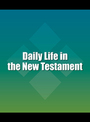 Daily Life in the New Testament cover