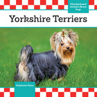 Yorkshire Terriers image