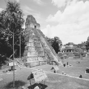 The ruins of Tikal, a once thriving trade center for Maya merchants.  Enzo and Paolo Ragazzini/Corbis.