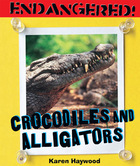 Crocodiles and Alligators image