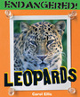 Leopards cover