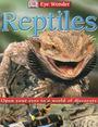 Reptiles cover