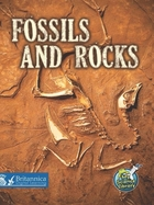 Fossils and Rocks image