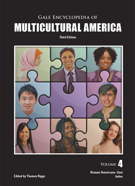 hispanic americans diversity Free college essay hispanic american diversity introduction the hispanic or latino americans are a diverse group that share the same heritage, but have many other.
