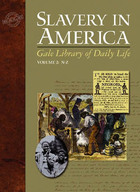 Gale Library of Daily Life: Slavery in America image