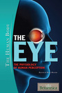 The Eye: The Physiology of Human Perception cover