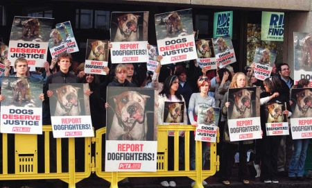 Prior to the sentencing of professional football quarterback Michael Vick on dog-fighting charges in 2007, protesters expressed their outrage against all dogfighting.