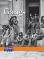 Gangs cover