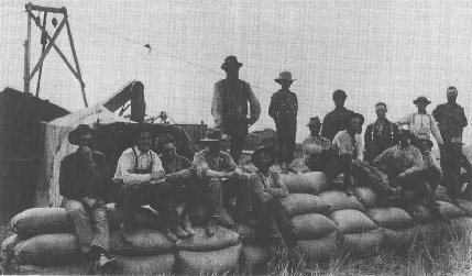 Migrant field hands sitting on bags of wheat, near Moro, Oregon, c. 1880.